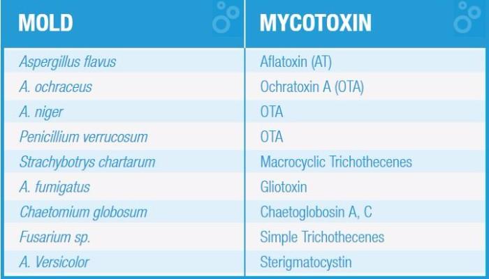Urinary Mycotoxins Test - Invivo Healthcare